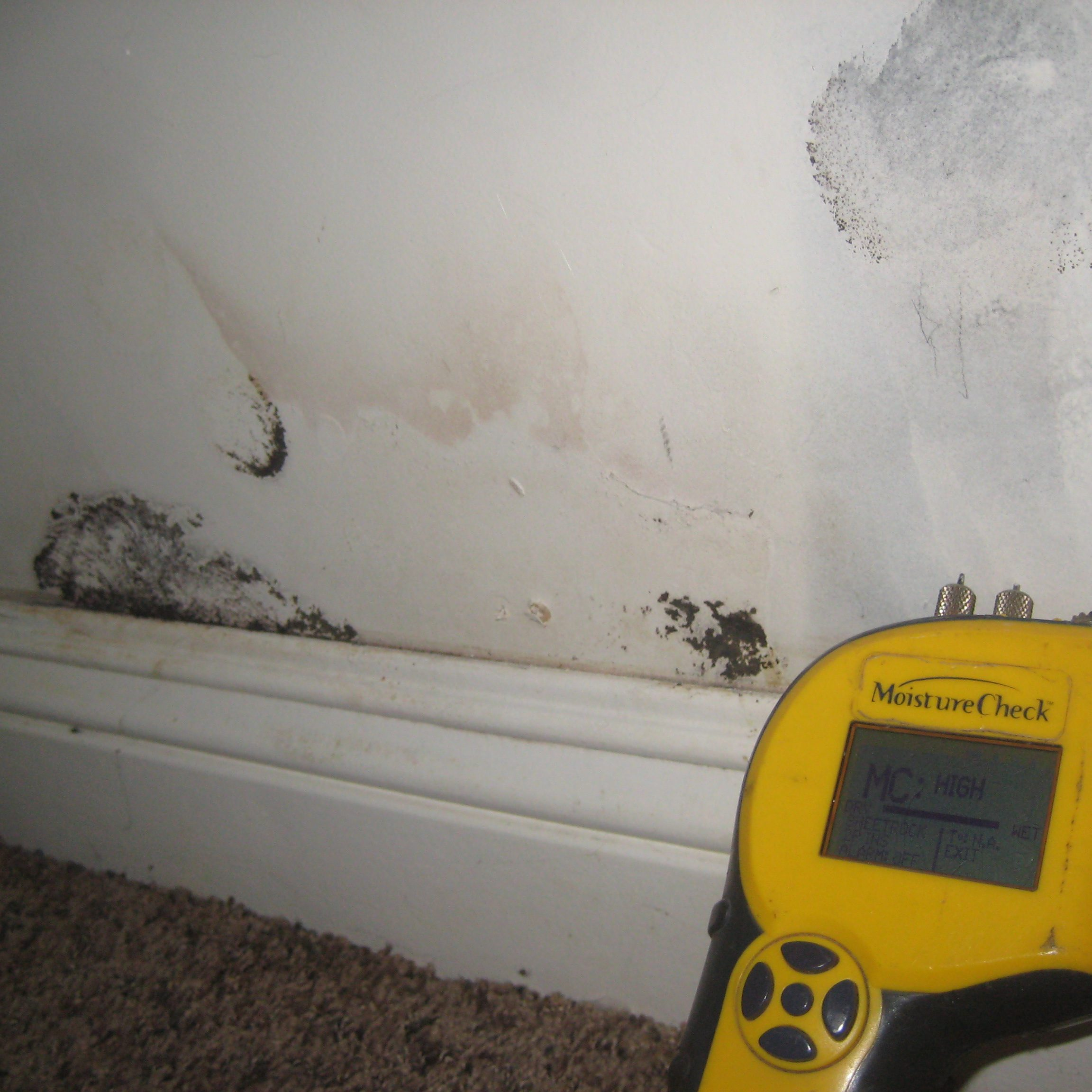moisture-content-drywall